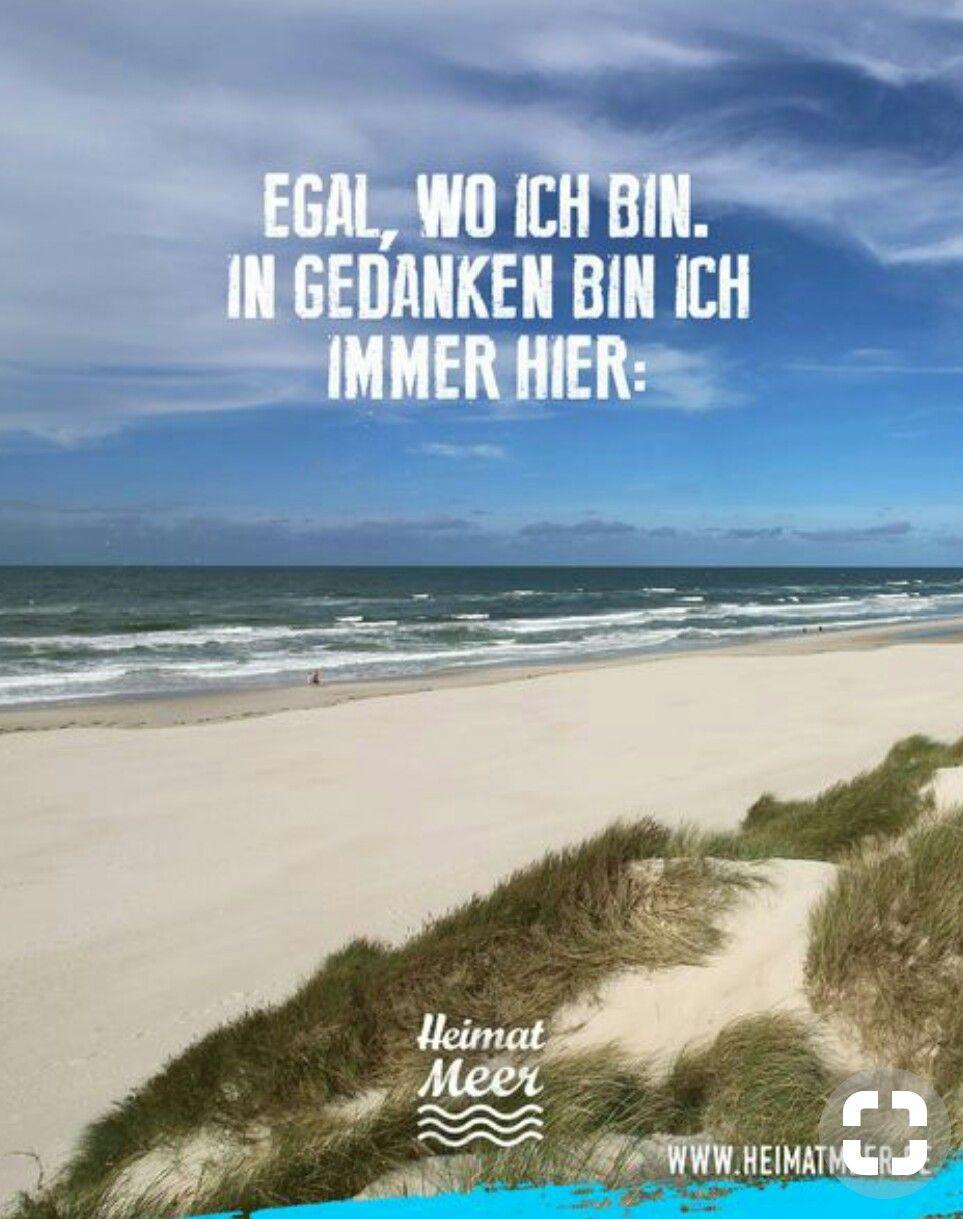 Pin Von Mich Elle Auf Sprüche Gedanken Strand Sprüche
