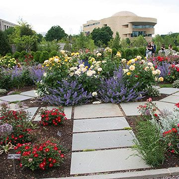 Garden Ideas From The United States Botanic Garden