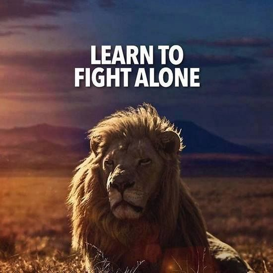 Learn To Fight Alone Quotes Quotes Positive Quotes Learn To