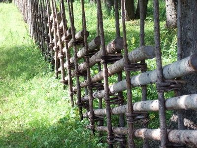How To Make A Tree Branch Lattice Other Wattle Fence