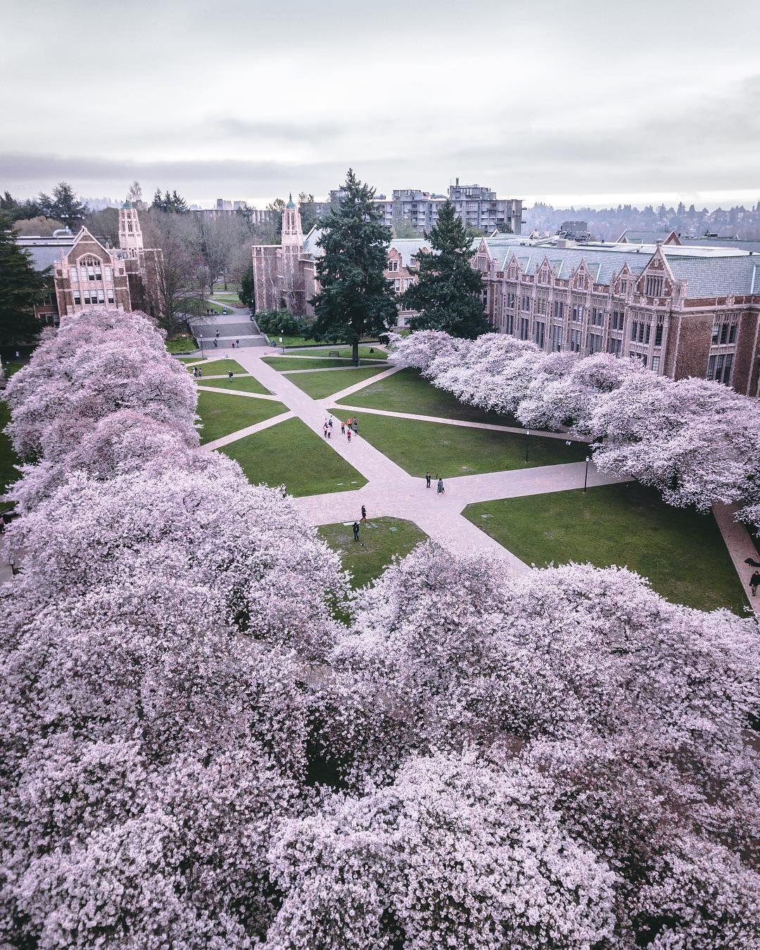 University Of Washington Department Of Chemistry University Of Washington College Architecture College Campus