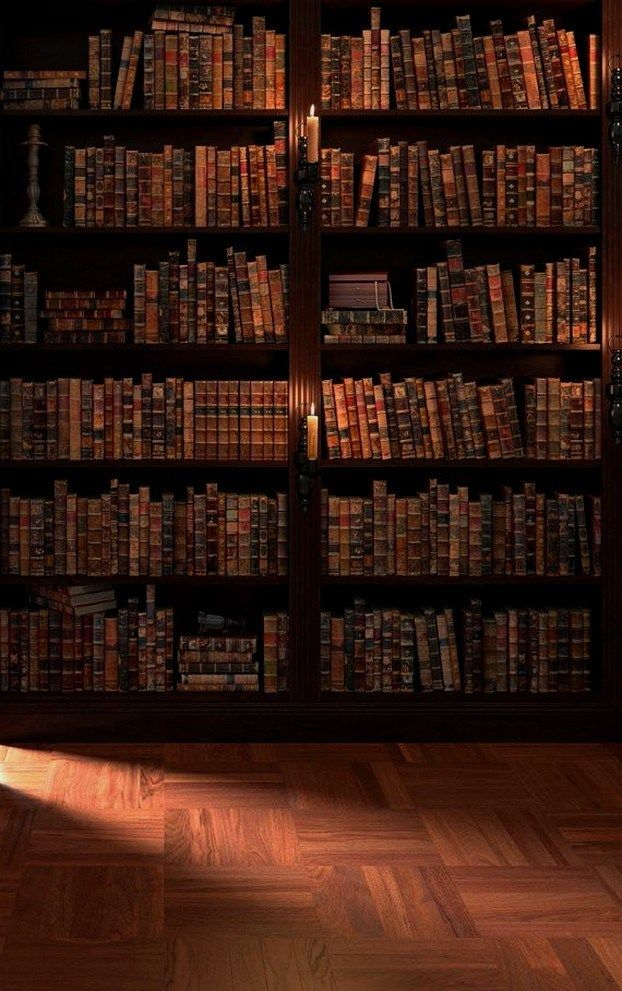 29 Incredible Home Libraries That Will Blow Your Mind