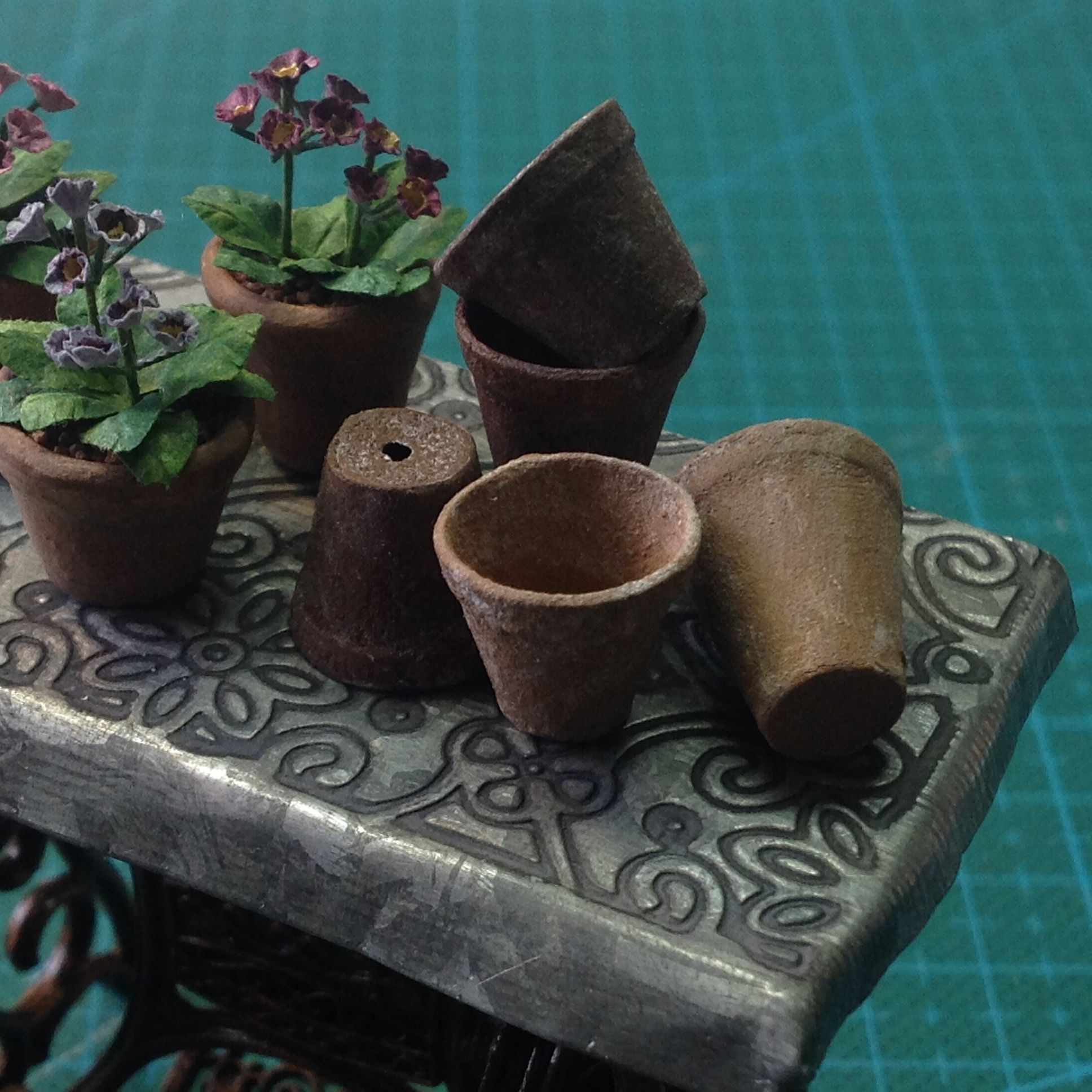 Auriculas And Clay Pots Miniatyrer Blommor Vaxter