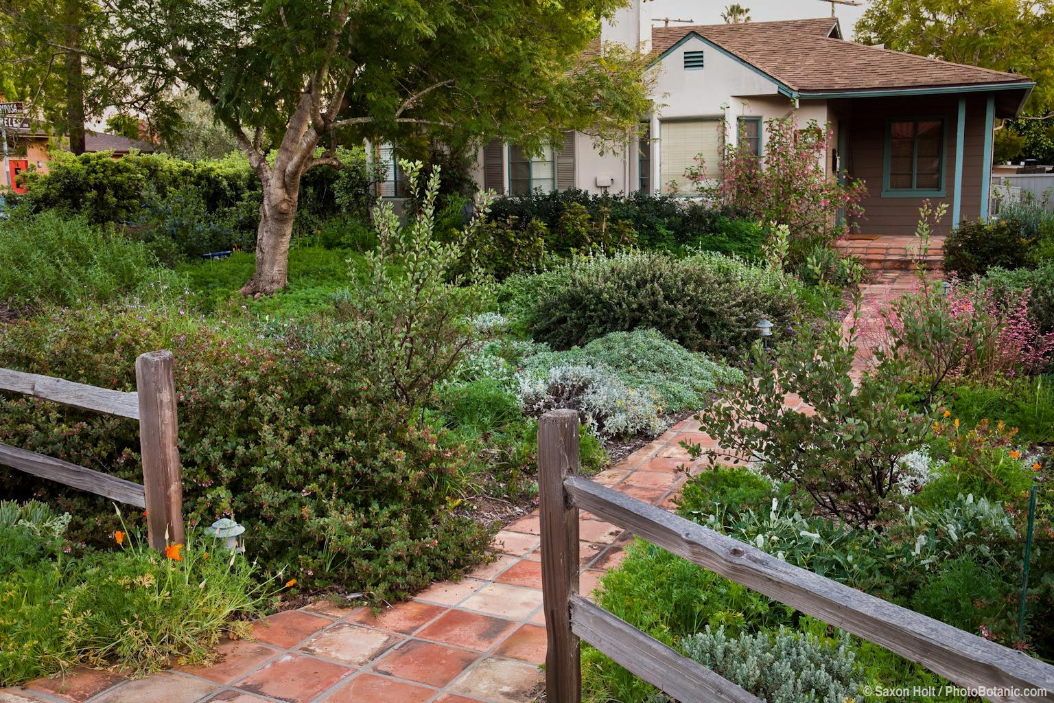 Picket fence and brick path entering front yard california for Garden design with native plants