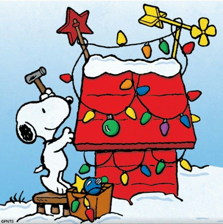 Snoopy S Doghouse With Images Snoopy Christmas Snoopy Love