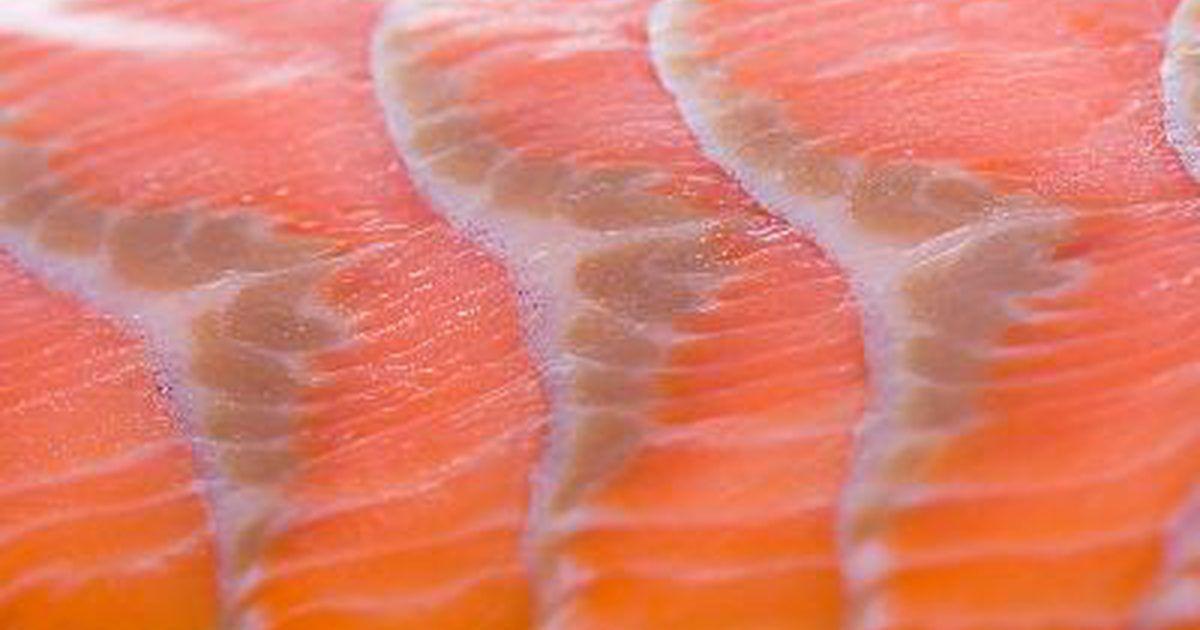 ¿Por cuánto tiempo el salmón permanece fresco?. El salmón salvaje es un plato muy versátil. Se puede hacer al horno, a la plancha, ahumado, cocido, estofado, en empanadas, ensaladas, convertirse en batidos para salsas y colocarse en trozos sobre algún plato. Pero el salmón no es tan versátil cuando se trata de mantener su frescura. La mejor manera de asegurar su frescura es comer el salmón ...