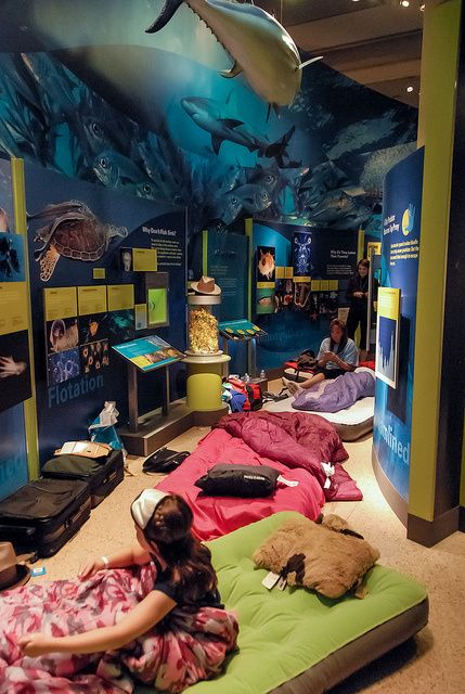 Things Every DC Kid Should Do Before Theyre Th Birthday - 10 awesome museums where you can spend the night