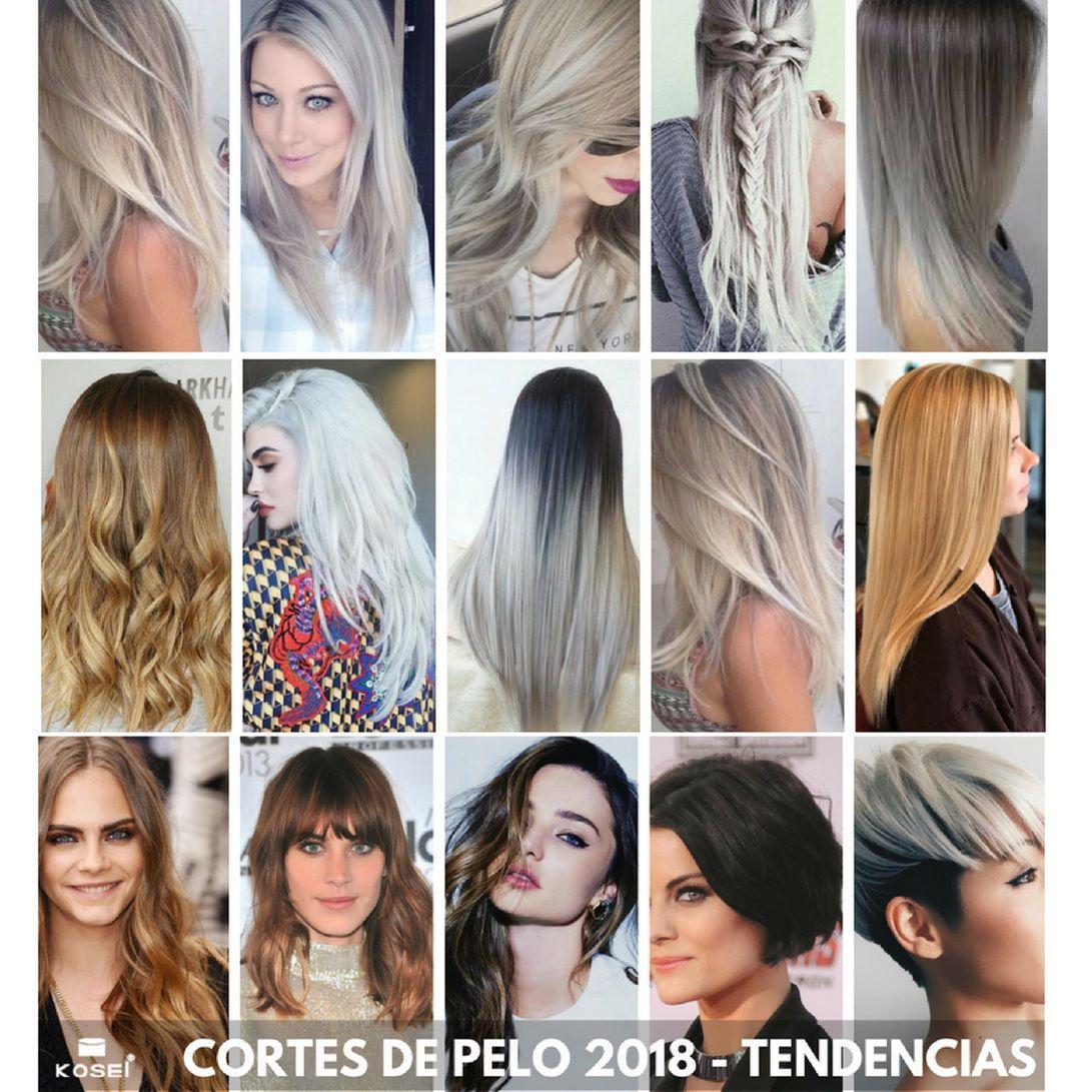 Color y corte de pelo de moda