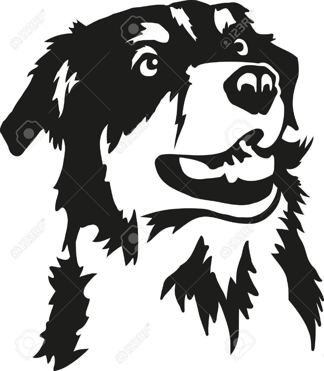 Australian Shepherd head , #AFFILIATE, #Australian, # ... (1136 x 1300 Pixel)