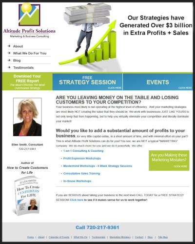 Altitude Profit Solutions Website Design Portfolio W3now Portfolio Web Design Portfolio Portfolio Website Design