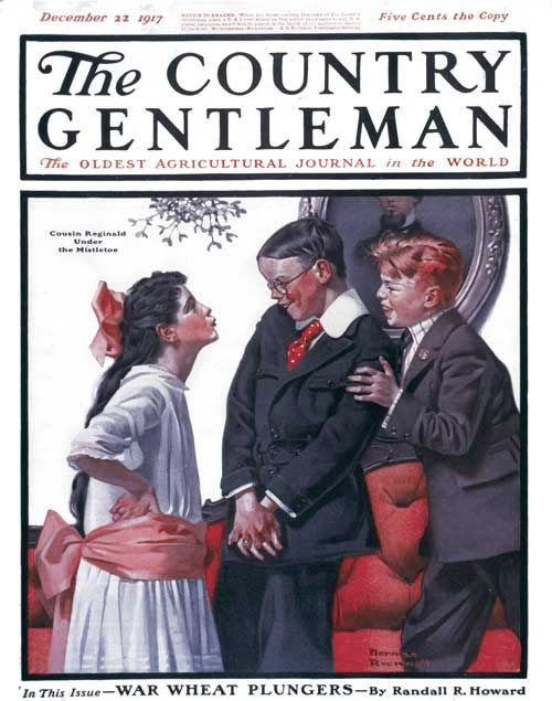 magazine cover Reproduction Poster Country Gentleman 1921 Wall art
