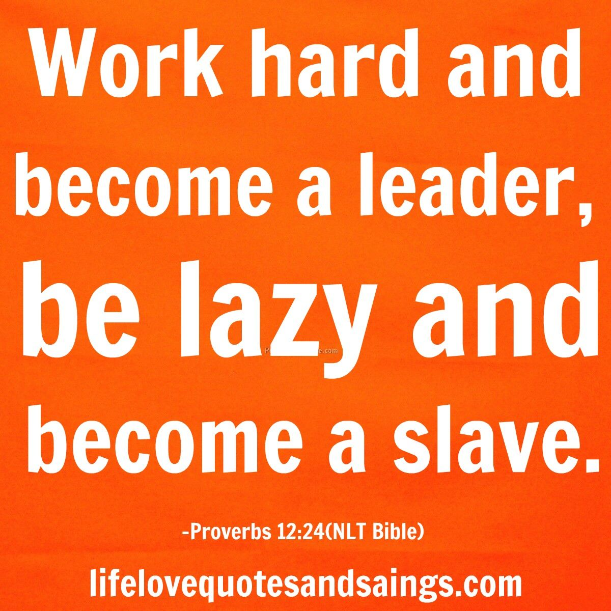 Quotes Hard Work Hard Work Quotes  Yahoo Image Search Results  Mindset