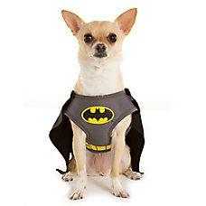 DC Comics™ Pet Halloween Batman Harness