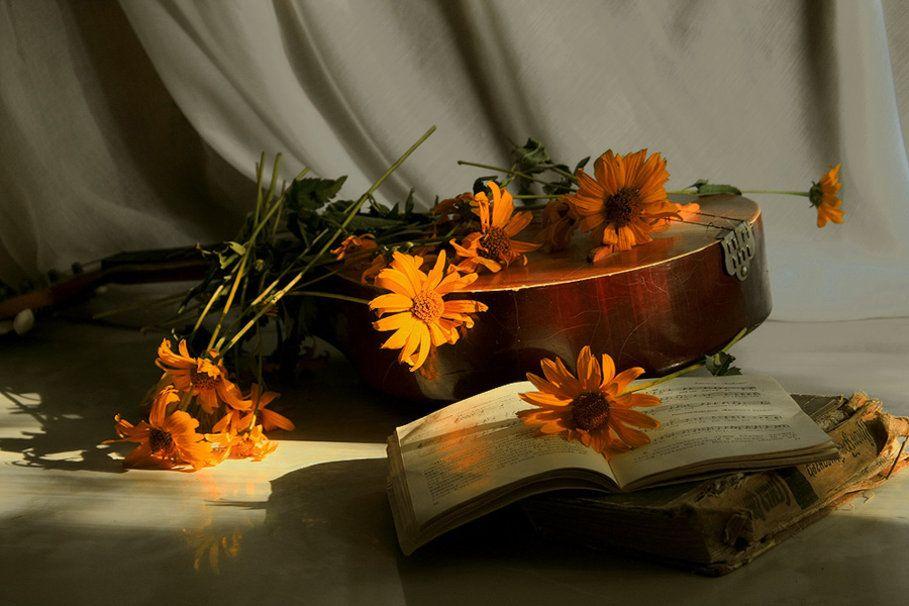 flores, livro e bandolim Vetor