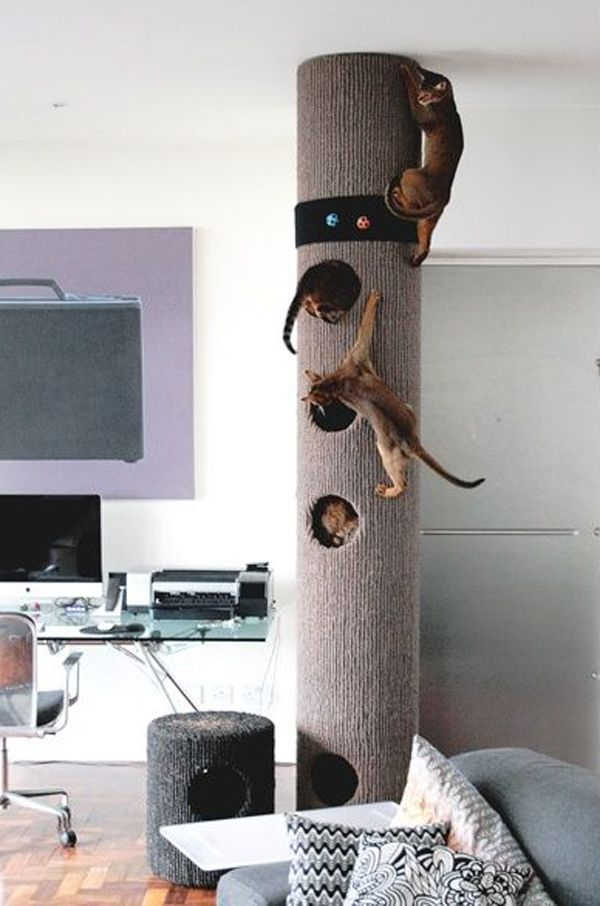 25 Indoor Cat Tree Ideas For Play And Relax Cat House Diy Modern Cat Tree Diy Cat Tree