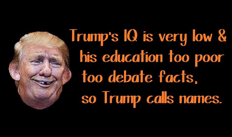 Pin On Dump Trump 2020