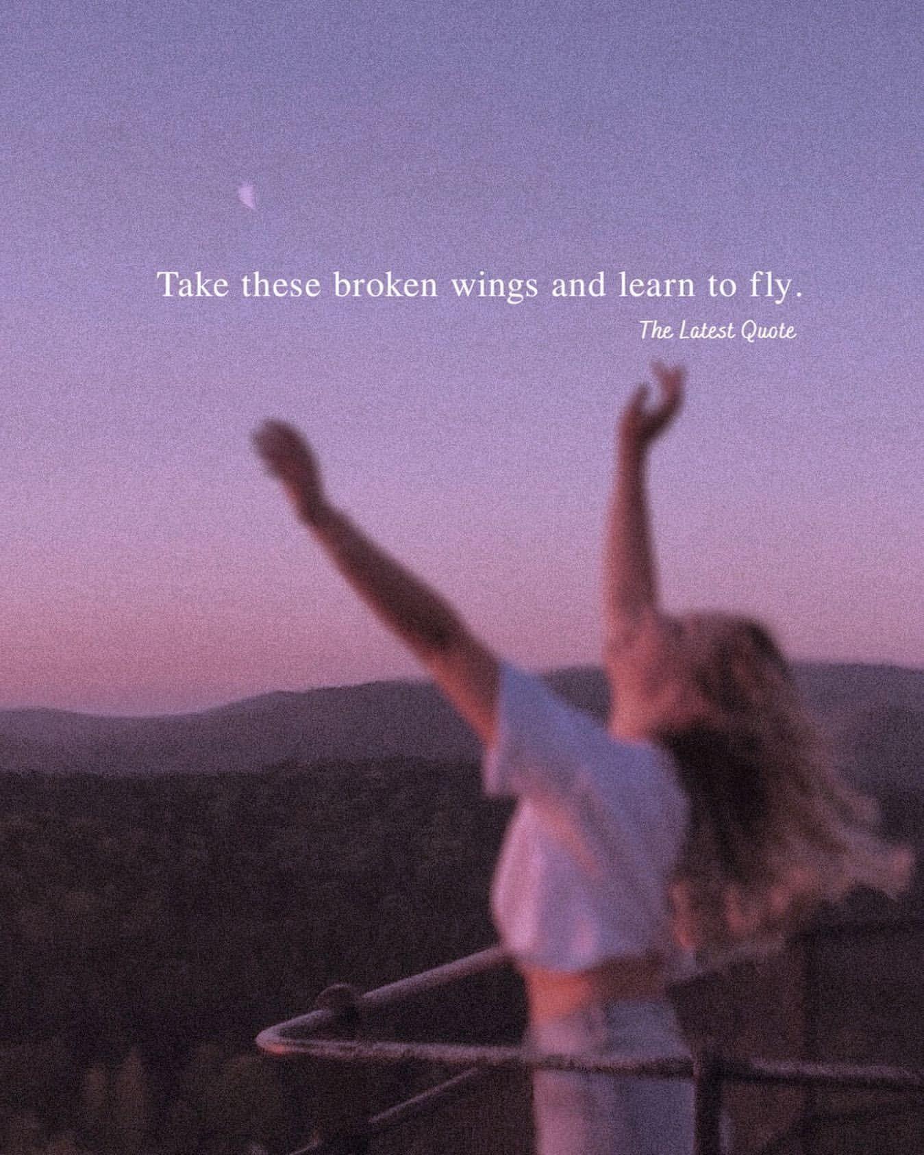 Take These Broken Wings And Learn To Fly Di 2020 Kutipan Positif Belajar Pemerintah