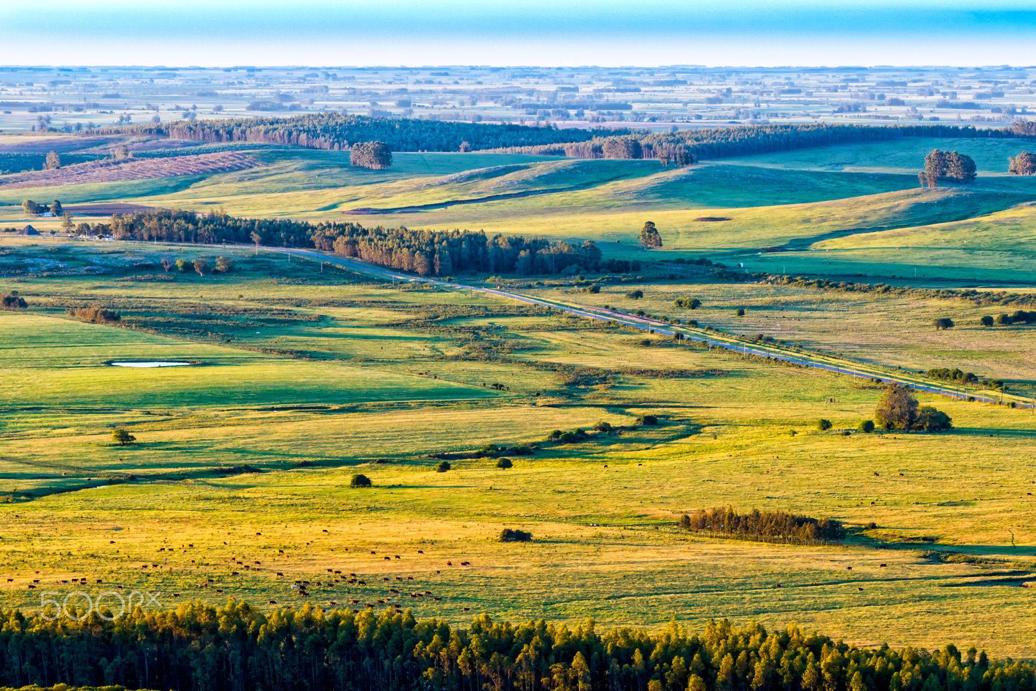 Landscape Paisajes Uruguayan