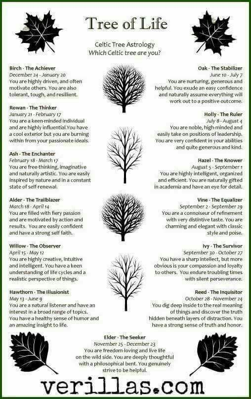 Pin By Keely Pennell On Trees Pinterest Spiritual Symbols And