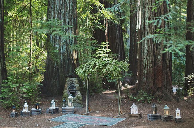 explore redwood forest wedding woodland wedding and more