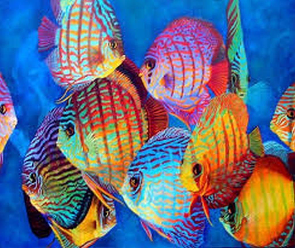 Melusine H Peinture Mer Poissons D Aquarelle Et Peintures De