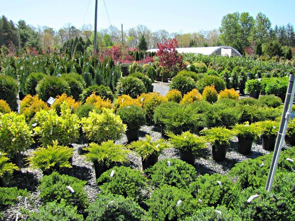 The 30 Best Garden And Landscaping Centers In New Jersey Amazing