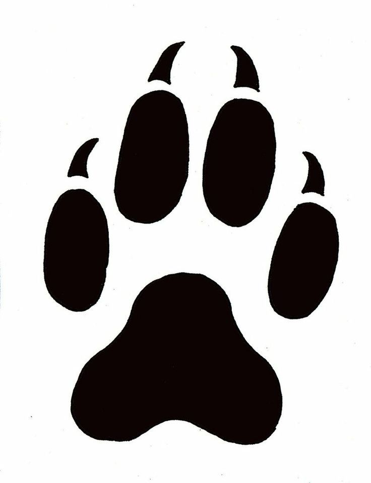 Leopard paw print outline paw prints template free for Tiger paw template