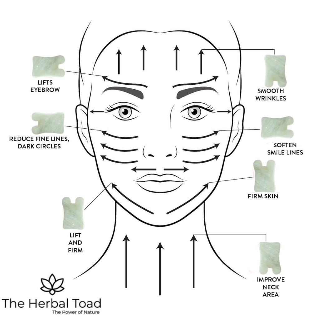 Benefits and Technique for Gua Sha Facial