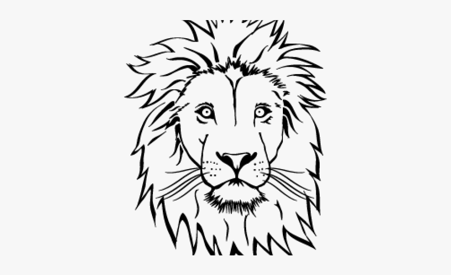 Download And Share Drawn Lion Face Lion Face Outline Drawing Cartoon Seach More Similar Free Transparent Cliparts In 2020 Face Outline Outline Drawings Lion Face Lion face outline tattoo lion outline vector isolated. lion face outline drawing cartoon
