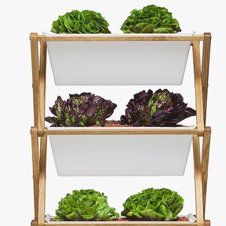 Planting Shelf by URBANATURE | MONOQI #bestofdesign