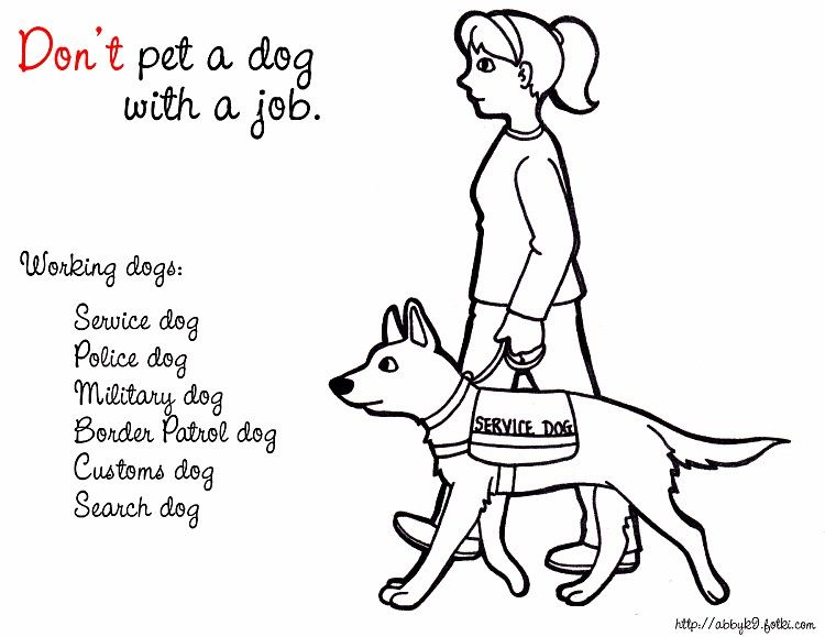 Dog With A Job Dog Safety