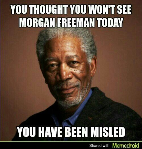 5ae07d33f1ce9e48525c5dacc381c237 morgan freeman meme and yes you have been misled funny stuff