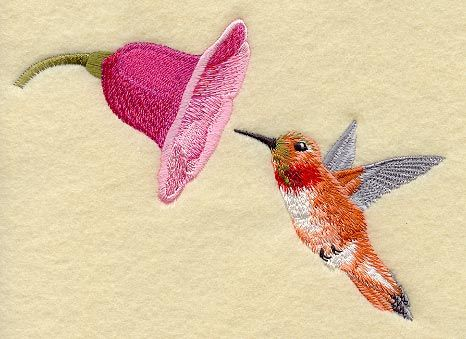 hummingbird and flowers pictures - Google Search