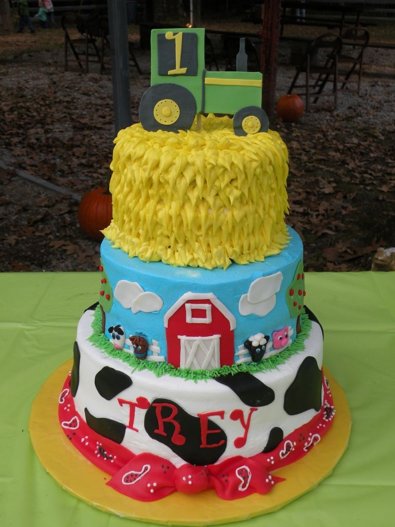 Cole's Birthday Farm Cake Farm birthday cakes, Farm cake