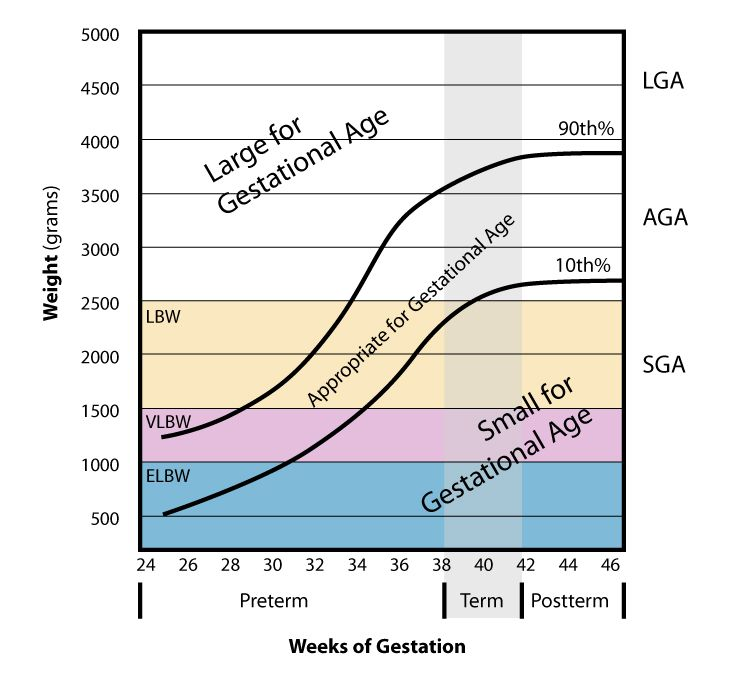 Weight Vs Gestational AgeJpg  Medical    Goats Board