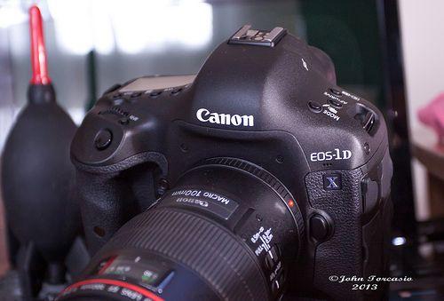 Canon Ef 100mm F2 8 L Macro Lens On A 1d X Macro Lens Canon Ef Canon