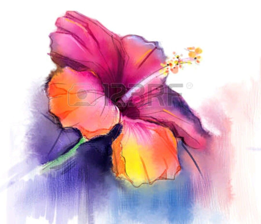 Pin by edith rhodes on watercolors flowers pinterest watercolor