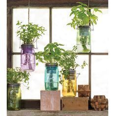 Beautiful indoor garden decoration ideas gardening herb vertical gardens also best images rh pinterest