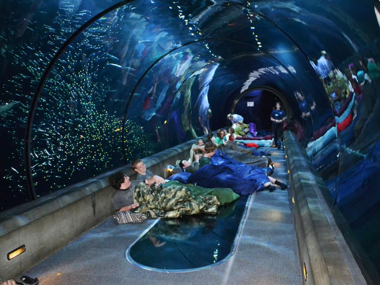 Best Us Aquariums Travelchannel