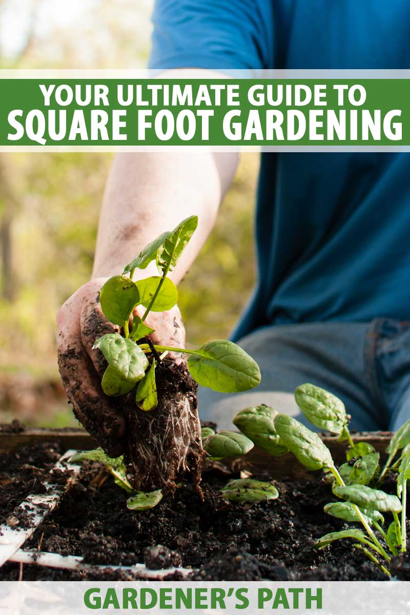5ae41e3643596c1ca787bbd987a201e5 - Garden Time's Square Foot Gardening Potting Soil
