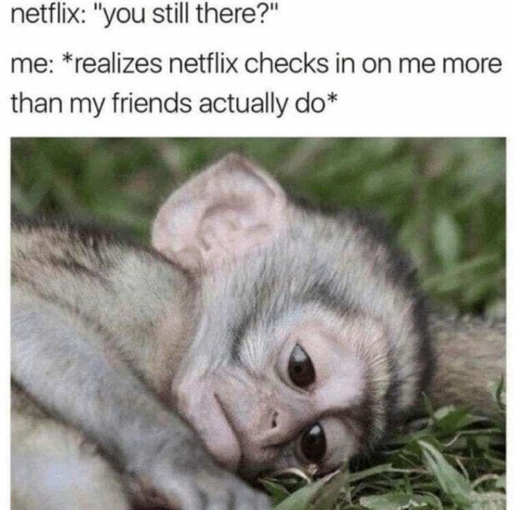 23 Hilarious When Netflix Asks If You're Still Watching Memes