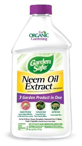 Garden Safe 93179 16-Ounce Neem Oil, Case Pack of 1 by Garden Safe ...