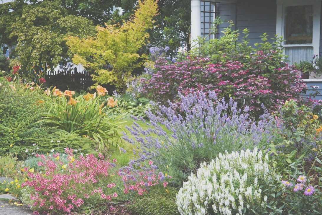 south florida landscaping best plants for south florida landscaping