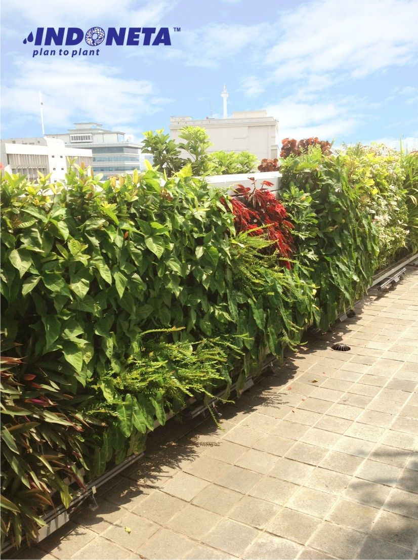 Vertical garden Indonesia/Taman Vertikal indonesia Jl