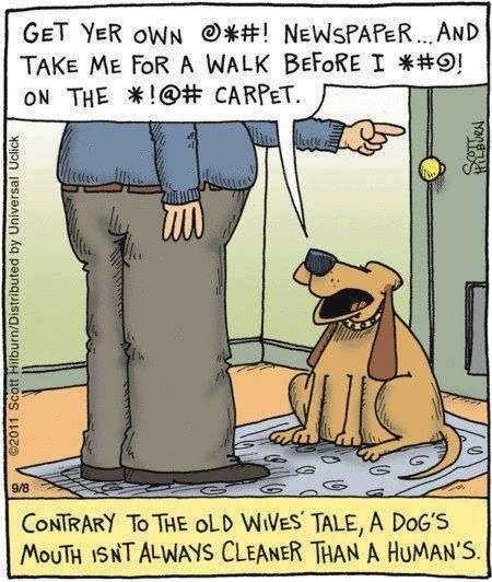 Funny Dog Cartoon Dog Jokes Dog Comics Cartoon Dog