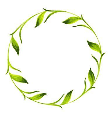 Decorative Circle Branch Of Green Tea Vector Image On Circle