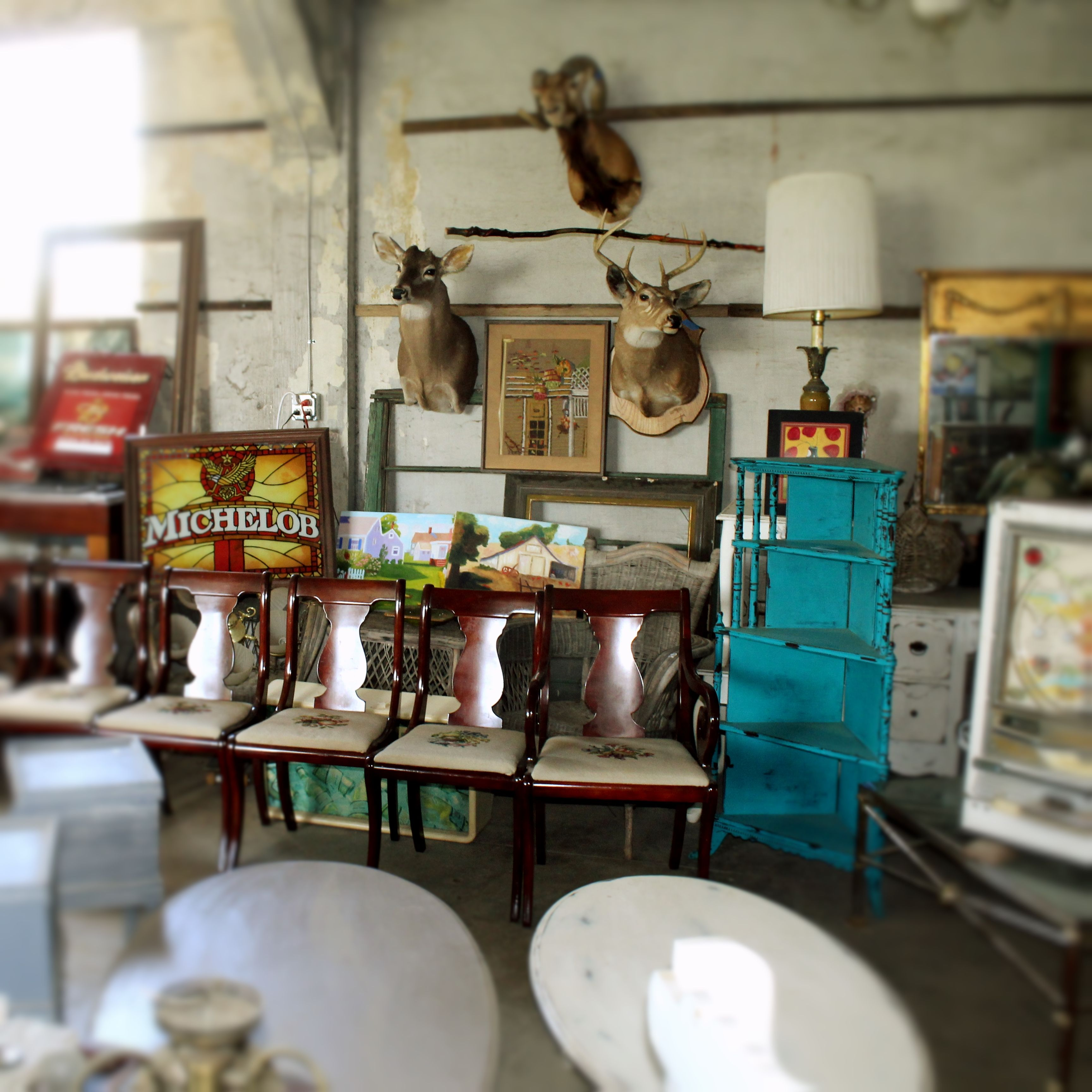 Erfreut Küchendesign Jacksonville Florida Ideen - Küche Set Ideen ...