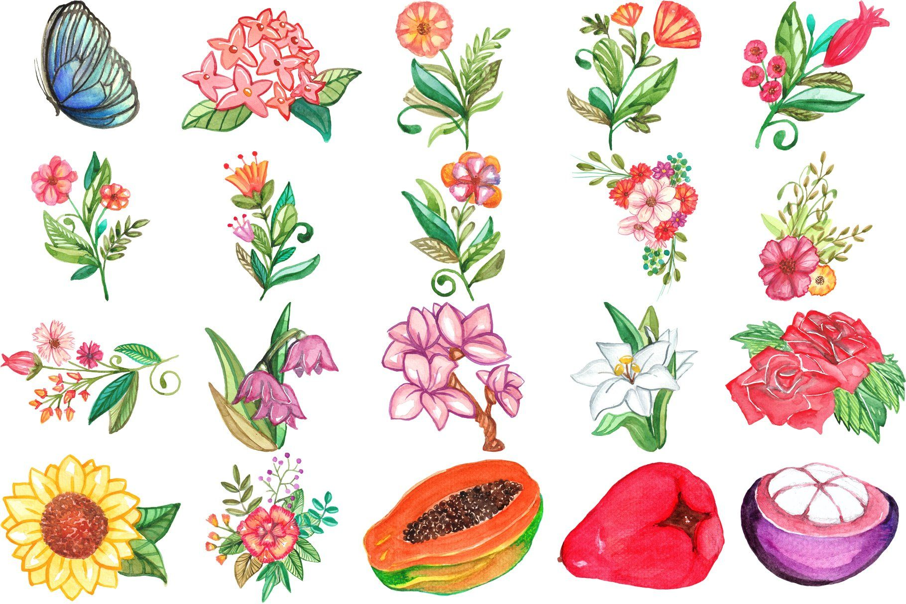 99 Philippine Icons Watercolor Png Tropical Illustration Leaf Images Flag Art