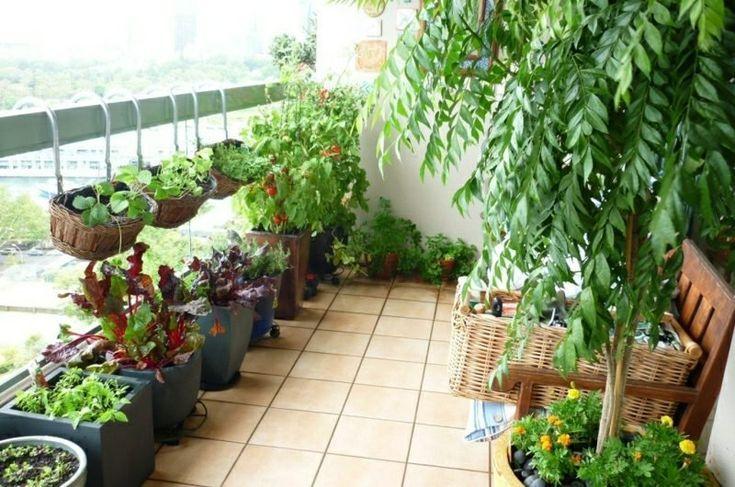 Anbau von Gemüse auf dem Balkon: Welche Sorten eignen sich am besten für diesen Zweck? #anbauvongemüse
