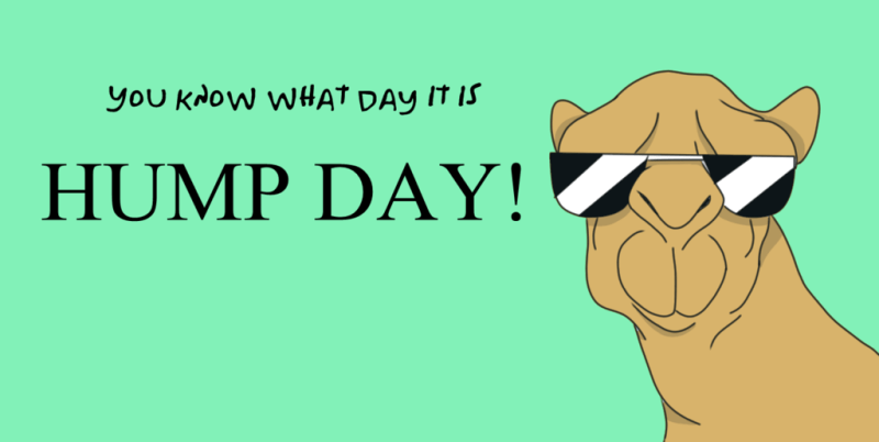 November 25 2020 Hump Day Quotes Happy Hump Day Meme Hump Day Humor